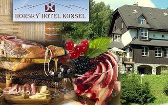 Hotel Konšel