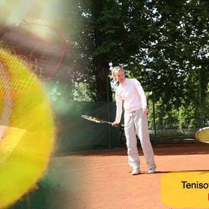Hodinový individuální tenisový kurz s profesionálním trenérem Petrem Štěpánkem jen za 399 Kč (cena je včetně kurtu). Využijte příležitost naučit se hrát údery správně technicky. Vaše kontrola nad míčem a tím i požitek ze hry rapidně vzroste. Nyní s 51% s