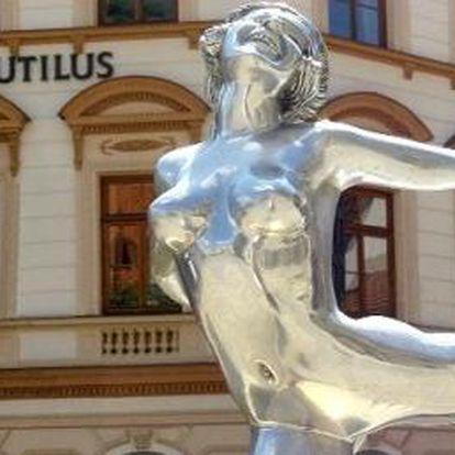 Atraktivní nabídka za 4 700,- Kč do nejluxusnějšího hotelu Nautilus pro 2 osoby na 2 noci přímo na náměstí v jihočeském Táboře. Viděli jste někdy to krásné náměstí v Táboře z výšky 2. patra ? To stojí za to.