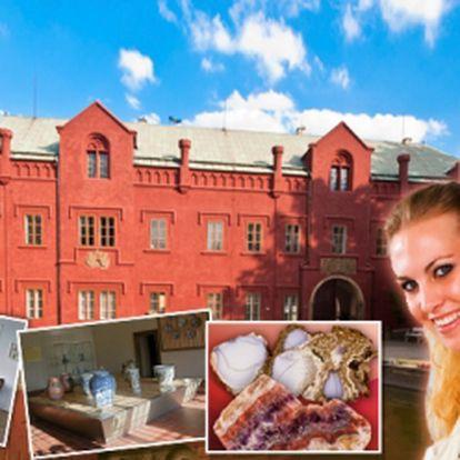 Romantický den na Zámku Klášterec nad Ohří se zajímavými prohlídkami a výtečným obědem jen za 275 Kč! Pozvěte partnera či vyražte s celou rodinou za nevšedním zážitkem se slevou téměř 50%!