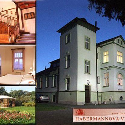 NABÍDKA ROKU! Ubytování ve vile, kde vznikal dokument, jež inspiroval Juraje Herze k natočení filmu Habermannův Mlýn! 3 dny pro 2 osoby se snídaní, nádherné secesní interiéry Habermannovy Vily + láhev sektu na pokoj!