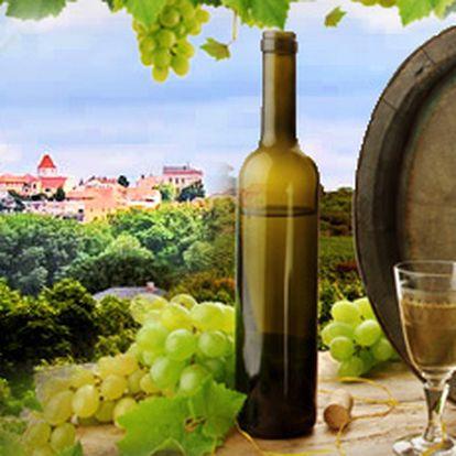 Degustace vín s prohlídkou zámku mělník a skvělým obědem v zámecké restauraci s výhledem na horu říp za 299 kč!! Pochutnejte si na báječném víně ze zámeckých sklepů se slevou 53%!!