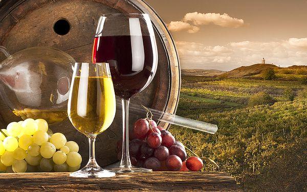 Jihomoravský pobyt s wellness a degustací vína v Hotelu Golf Garni v Mikulově