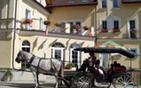 Mariánské Lázně pro DVA ve 4* hotelu Goethe včetně polopenze a bazénu za 1.450 Kč