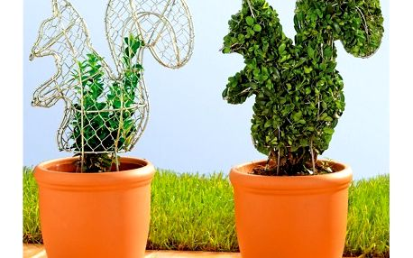 Forma na keře - Praktická forma na keře, která dodá Vaší rostlině originální vzhled