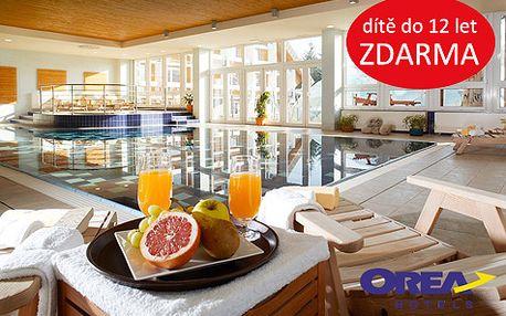 Relaxační pobyt plný luxusu a wellness pro DVA na 3 dny v Harrachově