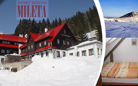 Zimní pobyt na 3 dny pro dva v horském penzionu Mileta ve Velké Úpě s polopenzí,kulečníkem a stolním tenisem. Horské městečko v údolí řeky Úpy, ideální místo pro zimní radovánky!! Penzion je umístěn ve skiareálu PORTÁŠKY!