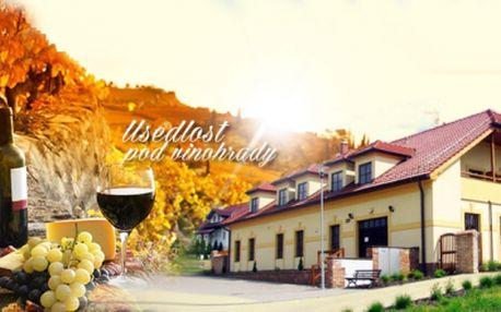 Exkluzvní vinařský pobyt včetně polopenze a bohatého programu pro dva za skvělých 2990 kč! Vstup do vyhřívaného bazénu, degustace vín, neomezená konzumace vína po celý večer, občerstvení a lahev vína na pokoj!