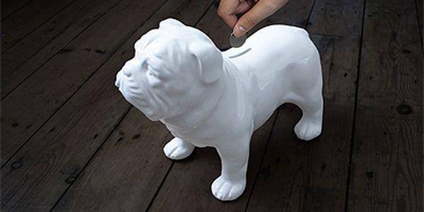 Porcelánový buldoček / kasička SUCK UK Bull Dog