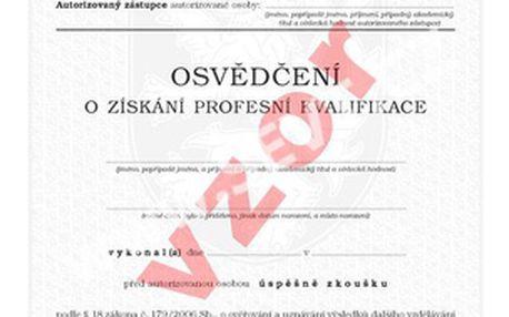 Dvoudenní kurz vč. získání profesní kvalifikace Specialista marketingu platné v EU - 16.3. a 18.3.2015