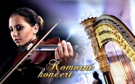 Komorní koncert v Jindřišské věži! Nechte se okouzlit špičkovými evropskými umělci ve hře na housle a harfu!
