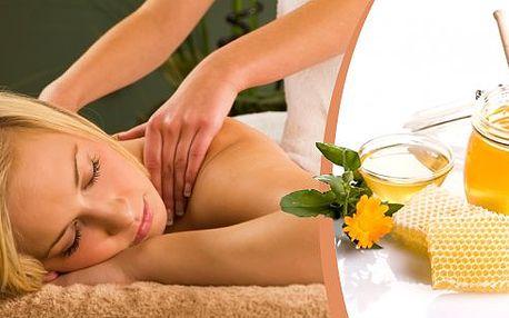 Medová detoxikační masáž je velmi účinná tradiční metoda zlepšující stav organismu. Odstraňuje toxiny z těla, omezuje projevy stresu a redukuje následky nezdravého životního stylu!! 60 minut medové masáže v salonu Kondice v Plzni!!