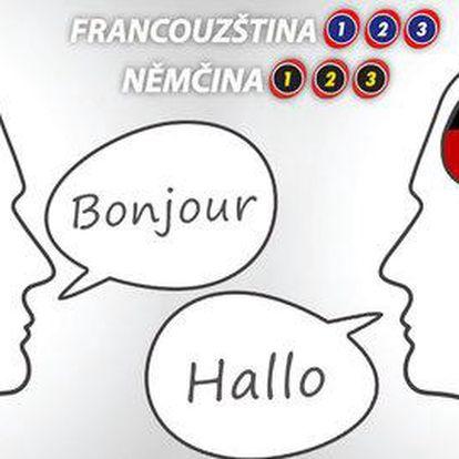 Online kurzy francouzštiny a němčiny až na 2 roky