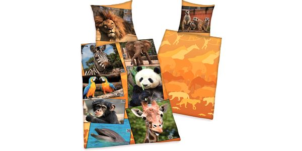 Herding Dětské bavlněné povlečení Zoo, 140 x 200 cm, 70 x 90 cm