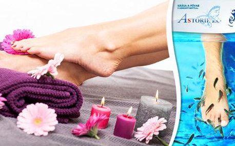 Koupel nohou s rybkami Garra Rufa a SPA pedikúra