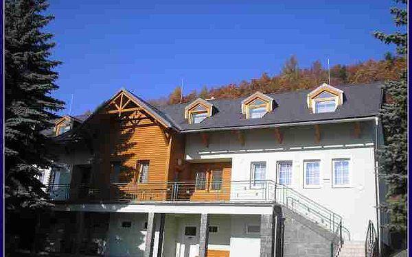 Holiday resort Losinka
