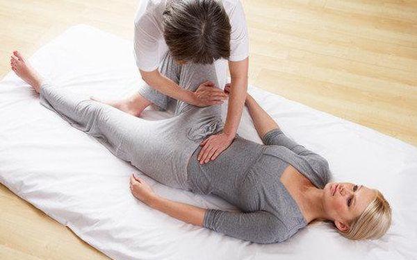 Vyberte si jednu z blahodárných masáží – japonskou ozdravnou masáž Shiatsu, masáž lávovými kameny, sportovní nebo tradiční čínskou akupunkturu teplem. Také výživové poradenství s diagnostikou.2