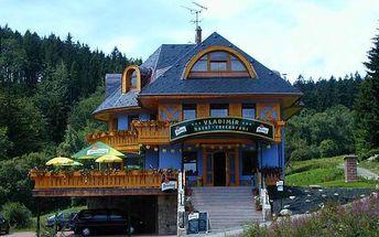 Hotel Vladimír