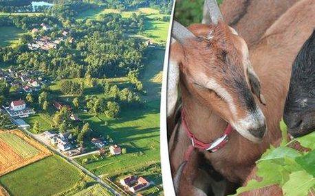 4 dny na farmě v Jižních Čechách u řeky Nežárky