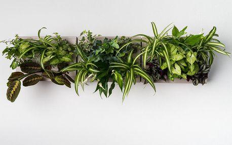 Vertikální květináč HOH! s neviditelným stojanem Trio Smart Grigio, 83x38 cm - doprava zdarma!