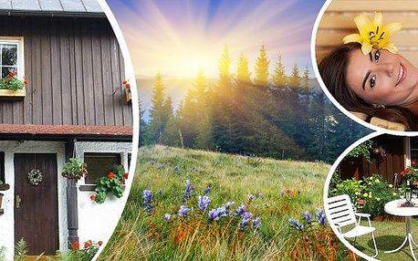 Krkonoše - 3, 5 nebo 7-denní pobyt se snídaní v malebném penzionu Herlíkovice. Vydejte se do hor za odpočinkem i sportem! K dispozici je Vám sauna, vybavená kuchyň, zahrada s terasou i půjčovna kol či koloběžek. Ideální místo pro milovníky pěší turistiky