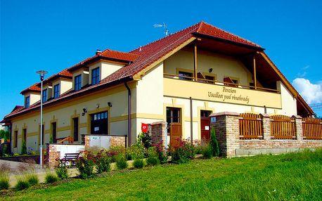 Jižní Morava pro DVA na 3 dny s polopenzí a neomezenou konzumací vín