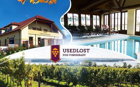Třídenní vinařský pobyt pro dva - Jižní Morava, Lednicko-valtický areál! Polopenze, sklípek s degustací a bazén!