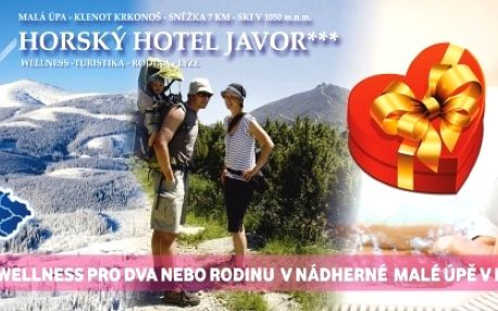 Tip! Dovolená 3 dny s polopenzí, wellness v Krkonoších!