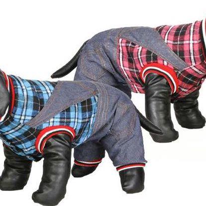 Moderní psí obleček ve 2 barevných provedeních