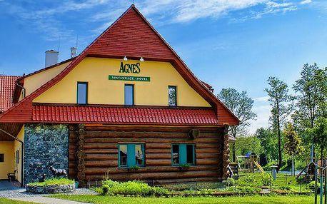 3–6denní pobyt s polopenzí a návštěvou palírny pro dva v hotelu Agnes u Kutné Hory