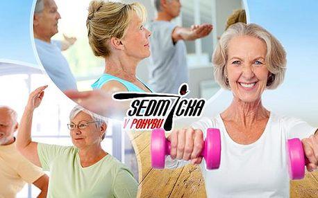 Cvičení pro seniory s regeneračními, kondičními a léčebnými účinky! Zbavte se bolestí a zlepšete kondici, 1-10 vstupů!
