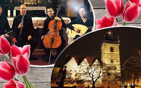 Velikonoční koncert od baroka po jazz! 22.3.2016 v Novoměstské radnici - vynikající Quartetto Telemann!
