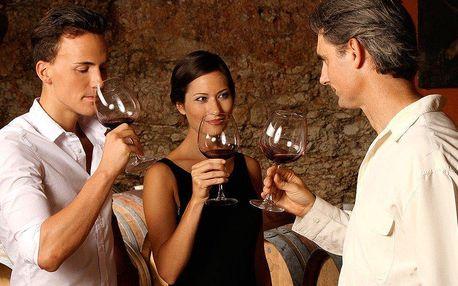 Kurz Wine Specialist Basic