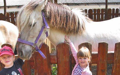 Zoopark Zelčín: na koloběžce i v kočáře s koňmi
