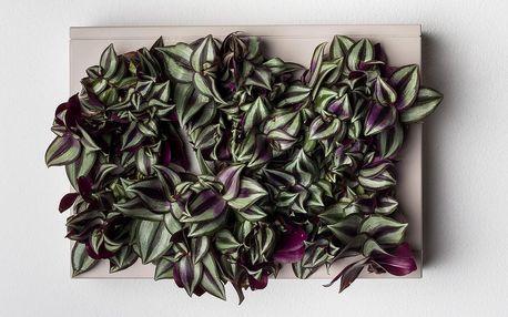 Vertikální květináč HOH! Grigio, 38x27 cm - doprava zdarma!