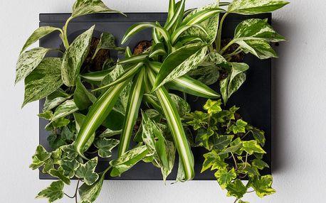 Vertikální květináč HOH! Nero, 38x27 cm - doprava zdarma!