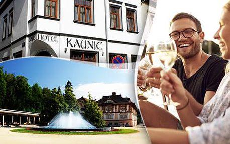 Turistika na Slovácku se snídaní v hotelu Kaunic, platnost do 30. 6. 2016