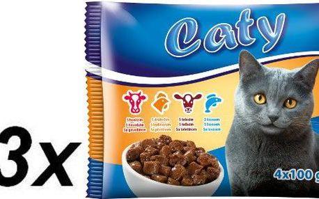 Akinu Caty kapsičky pro kočky ve šťávě Mix 13x ( 4 x 100g)