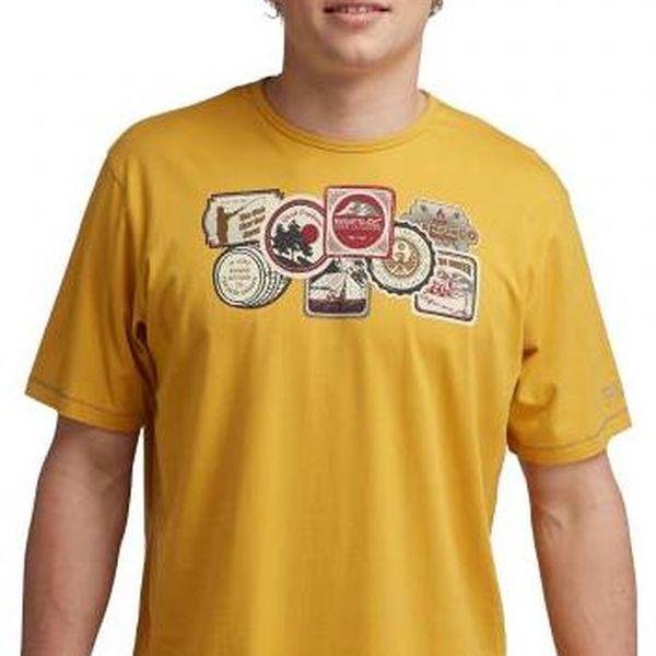 Pánské tričko Regatta RMT092 ORION Golden Spice 3xl3