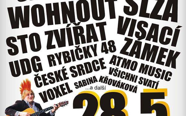 Festival Okoř se šťávou: Wohnout, UDG, Voxel, ATMO, Slza a další skvělá muzika2