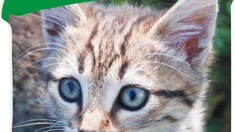 Jerry Fabrics bavlna povlečení - Kočka 2015 140x200 70x90