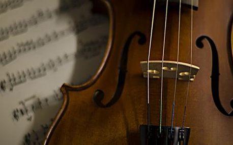 Koncert vážné hudby v Zrcadlové kapli Klementina - různé programy a termíny až do října!