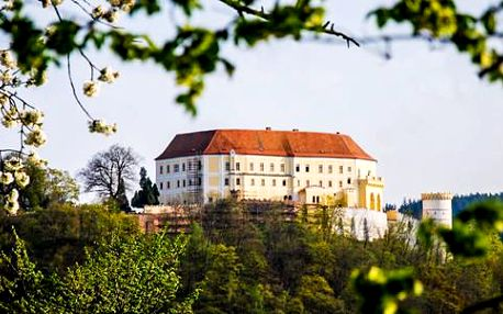 Prohlídka zámku Letovice se vstupem do jeskyně s drakem