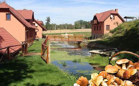 Pobyt v penzionu Dočkalův mlýn na 3 dny nebo 4 dny pro dva s polopenzí, krbová kamna, welcome drink.