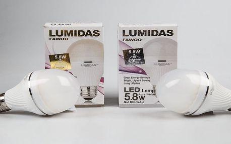 LED žárovka: Posviťte si a ušetřete