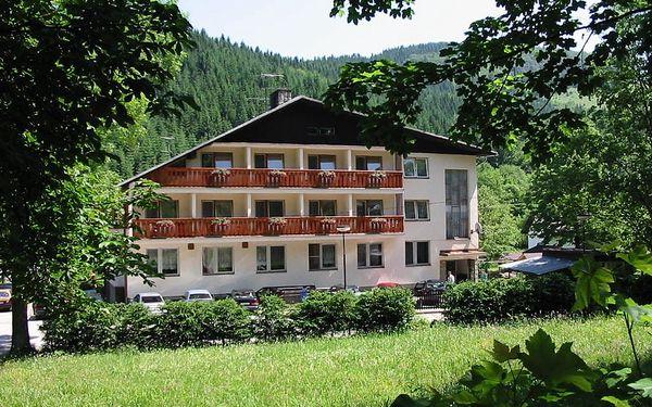 Hotel U Studánky
