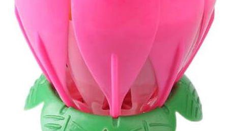 Narozeninové svíčky Lotus, které Vám přehrají narozeninovou melodii