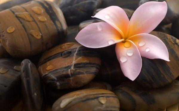Havajská masáž v Pardubickém kraji2