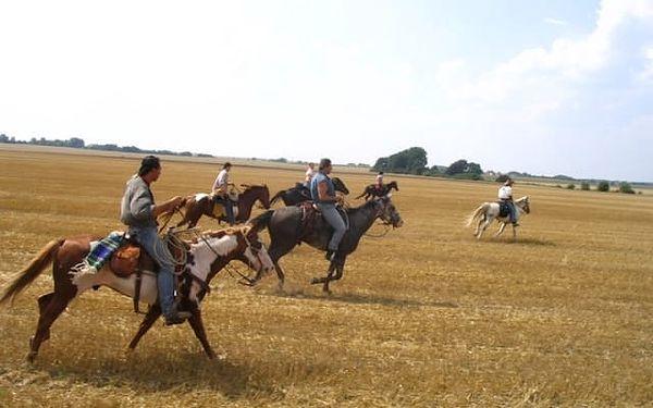 Vyjížďka na koni do přírody3