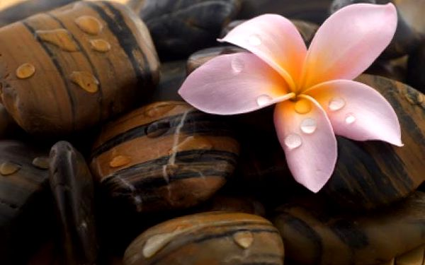 Havajská masáž LOMI LOMI3